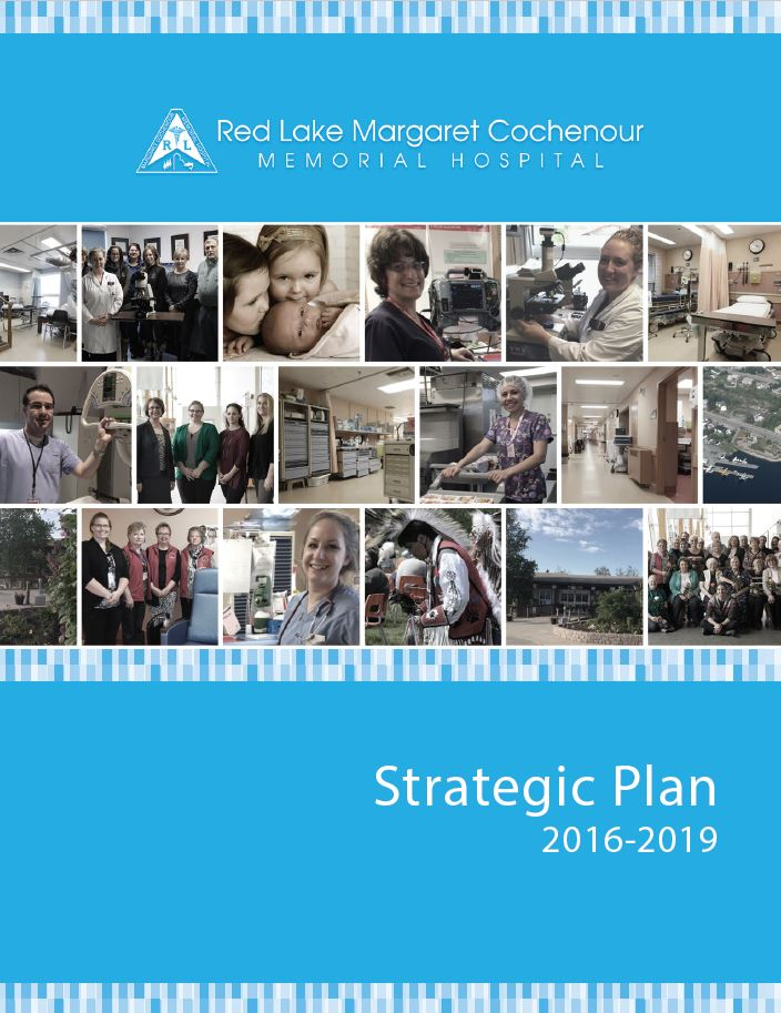 Strategic Plan 2016-2019